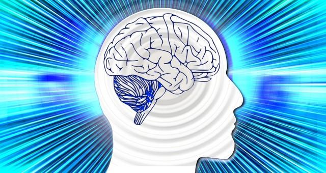 4 אפליקציות לאימון המוח